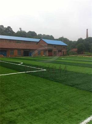 人造足球场草坪